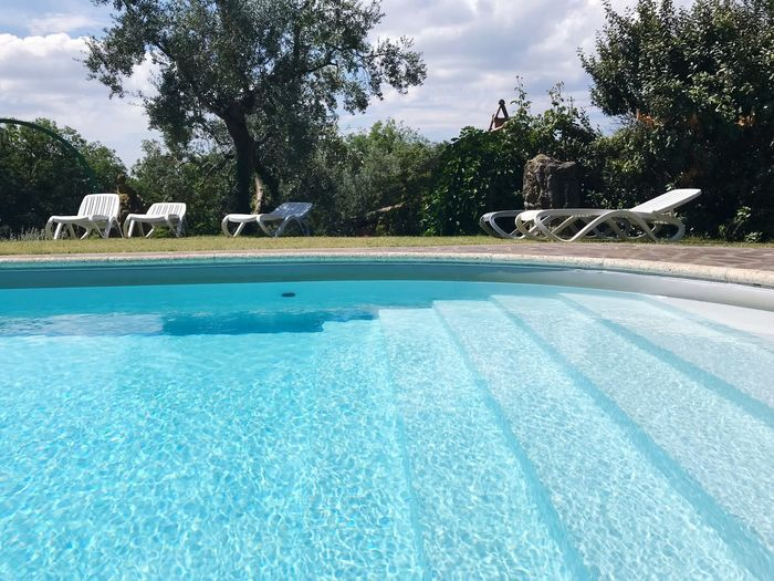 Swimming pool and sun loungers Sun Loungers Olive Tree Blue Color Swimming Pool Pool Tree Water Plant Nature Day Sky No People Cloud - Sky Poolside Outdoors Sunlight Beauty In Nature Tranquility Blue Tranquil Scene Turquoise Colored