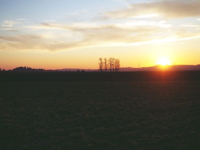 Scenic view of silhouette field against sky during sunset