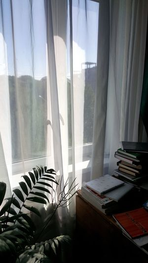 Home Interior No People Living Room Window Day Domestic Room Workathome First Eyeem Photo