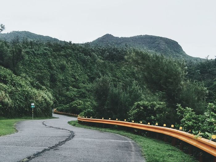 Tree Road Mountain Pinaceae Transportation Forest No People Nature Outdoors Day Winding Road Beauty In Nature Sky Curve Landscape Mountain Road Tree Area Greenisland