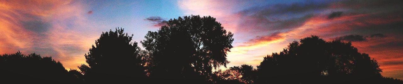 Panoramic Fire