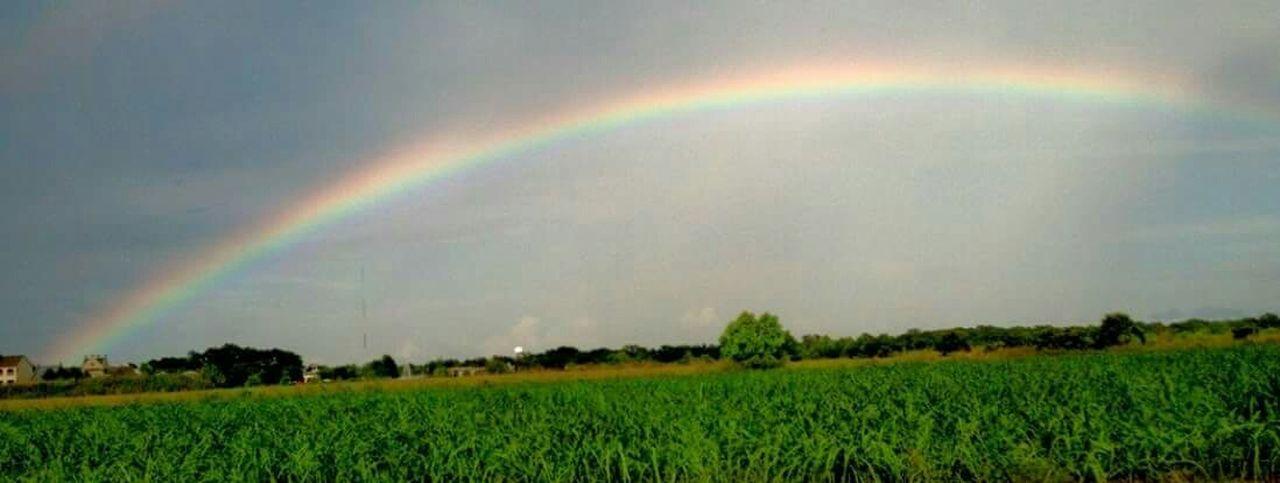 Rainbow Sky_collection Beautiful Nature Eye Of Ky Louisiana Sky