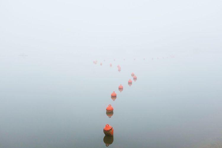 Kite on water against sky