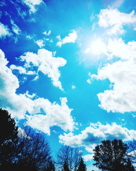 B.e.a.utiful sunny spring day in Minnesota! ❤🌞⛅📷 Sky Cloud - Sky Blue Tree Nature Beauty In Nature Treetop No People Tranquility Scenics Outdoors Day Blueskies Longer Days Life Is Beautiful Godsbeauty Puffy Clouds Clouds Collection