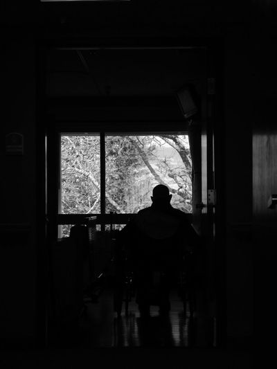 Adult Day Indoors  Man In A Wheelchair One Person Real People Rear View Silhouette View Of Trees Window