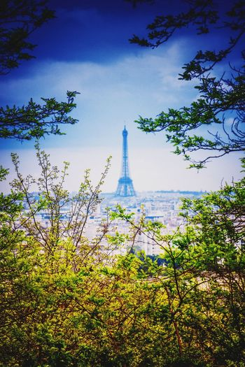 Vue sur la dame de fer. Beauty In Nature EyeEm Best Shots Eyeemphotography City Life City Cityscape Paris, France  Eiffel Tower Tour Eiffel Spraying Tree Sky Go Higher