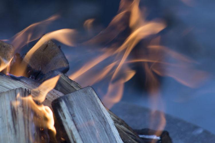 Close-up of burning woods