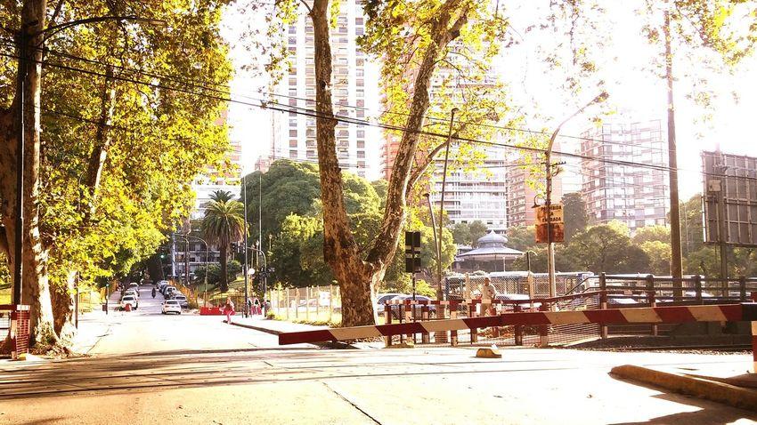 Belgrano Argentina 2016 Buenosaires Atardecer Street Photography