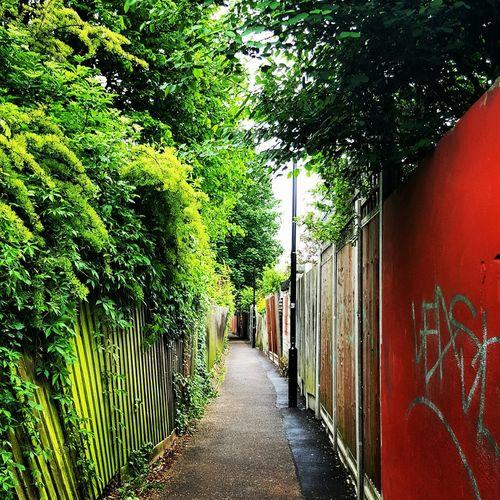 Street Alone 6am Jogging EyeEm LOST IN London
