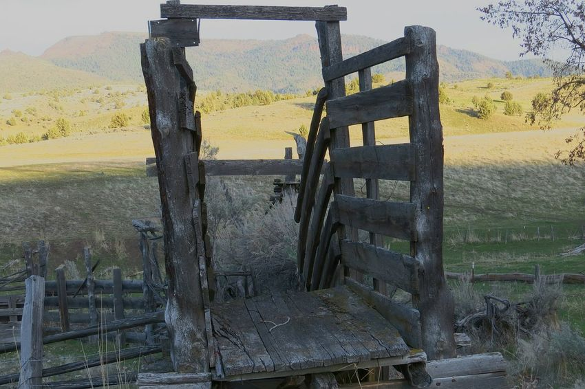 Oregon Central Oregon Times Gone By Forgotten Places  Abandoned Places Abandoned Old Homestead Check This Out Middle Of Nowhere
