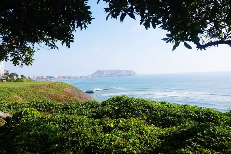 Sea Tree Nature Scenics Beauty In Nature Tranquil Scene Tranquility Water Growth Green Color No People Beach Outdoors Day Landscape Mountain Plant Foreground Sky Horizon Over Water EyeEmNewHere
