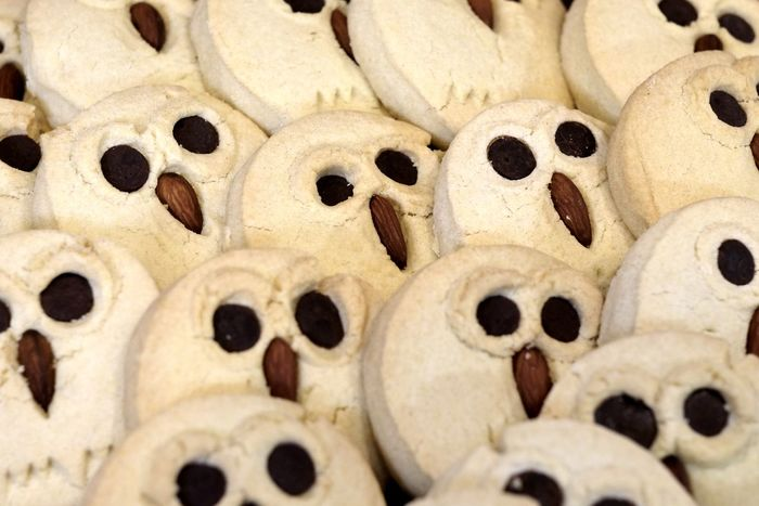 The cookie invasion Abundance Backgrounds Close-up Cookie Day Food Food And Drink Freshness Full Frame Homemade Indoors  Indulgence Large Group Of Objects No People Ready-to-eat Sweet Food EyeEm Best Shots Check This Out Bird Owl Eyes MISSIONS: