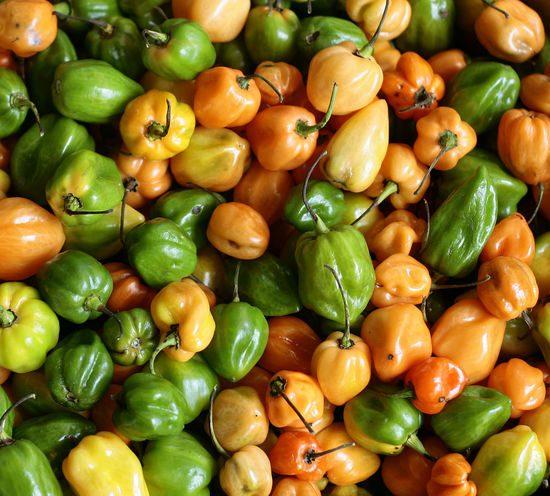 LITTLE HOTTIES Backgrounds Close-up Food Green Color Hot Peppers Market Food Orange Color Vegetable
