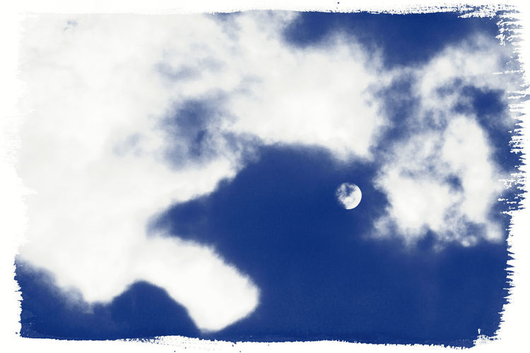 Bird Moon Cloud