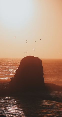 Animal Animal Themes Animal Wildlife Animals In The Wild Beauty In Nature Bird Flock Of Birds Flying Group Of Animals Horizon Over Water Large Group Of Animals Nature No People Scenics - Nature Sea Silhouette Sky Stack Rock Sunset Tranquil Scene Tranquility Vertebrate Water