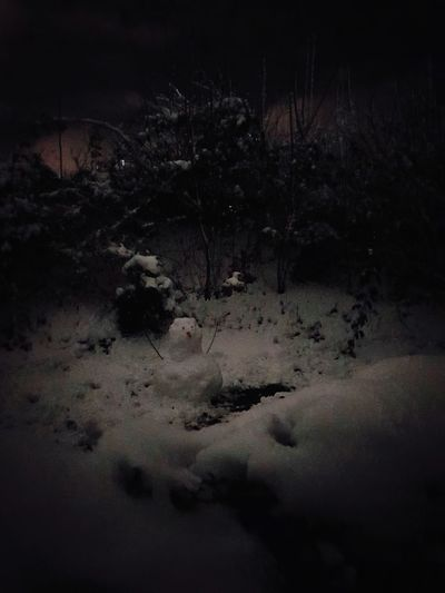 #Dark #snow #cold Outside Night No People Nature Black Background Outdoors