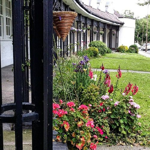 Flowers! Flowers Portsunlight England Home Sweet Home