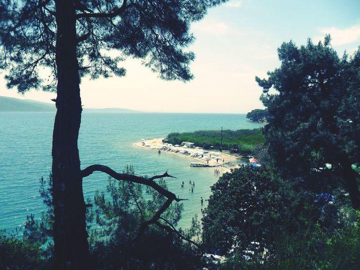 Gokova Akyaka Very Nice Sea Sea And Sky Tree_collection  Blue Sky Goodtime ❤️