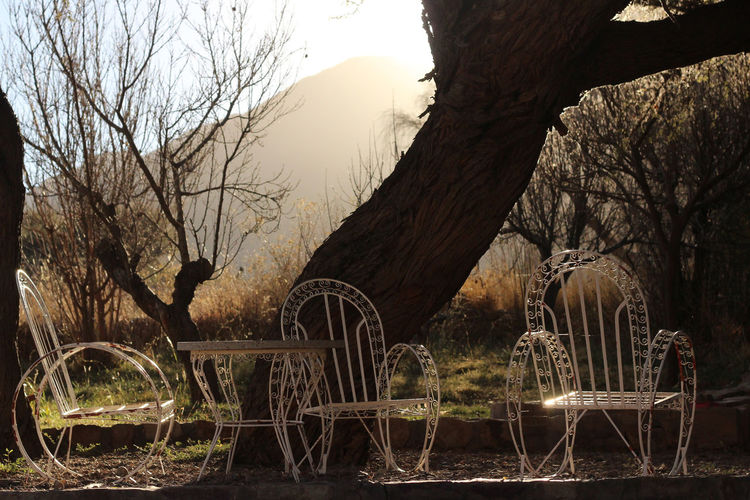 View of chair and table against bare tree and mountain