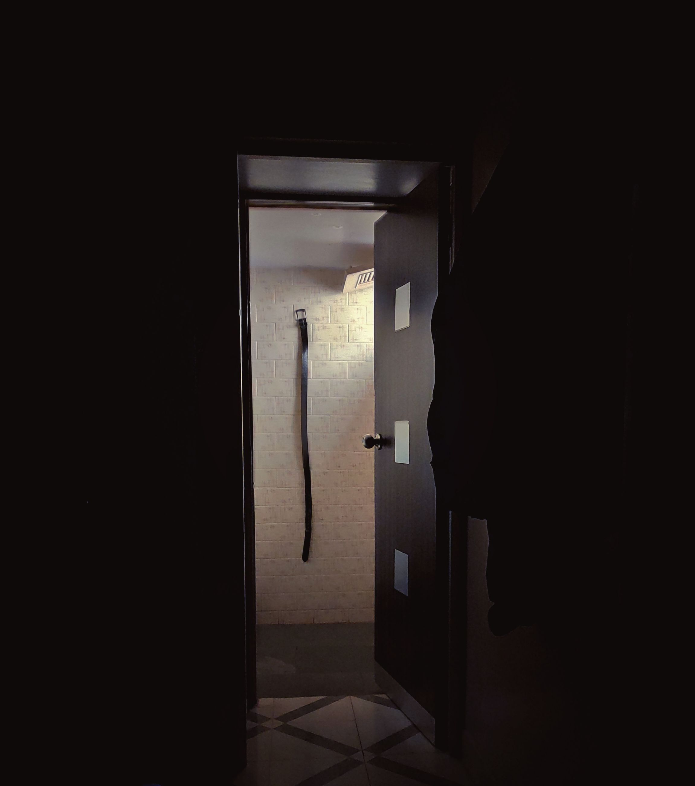 indoors, entrance, door, dark, domestic room, home, home interior, open, darkroom, one person, lifestyles, bathroom, real people, architecture, shadow, toilet, copy space, doorway, flooring