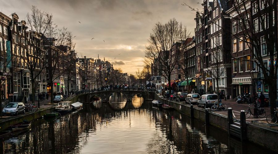 Architecture Built Structure Building Exterior Sky Bare Tree City Tree Cloud - Sky Reflection Car Land Vehicle Transportation Residential Building Outdoors Water No People Day Amsterdam Netherlands Holland Sunset