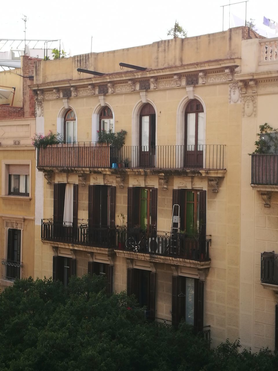 architecture, building exterior, window, built structure, balcony, no people, outdoors, day, tree, residential building, city, sky