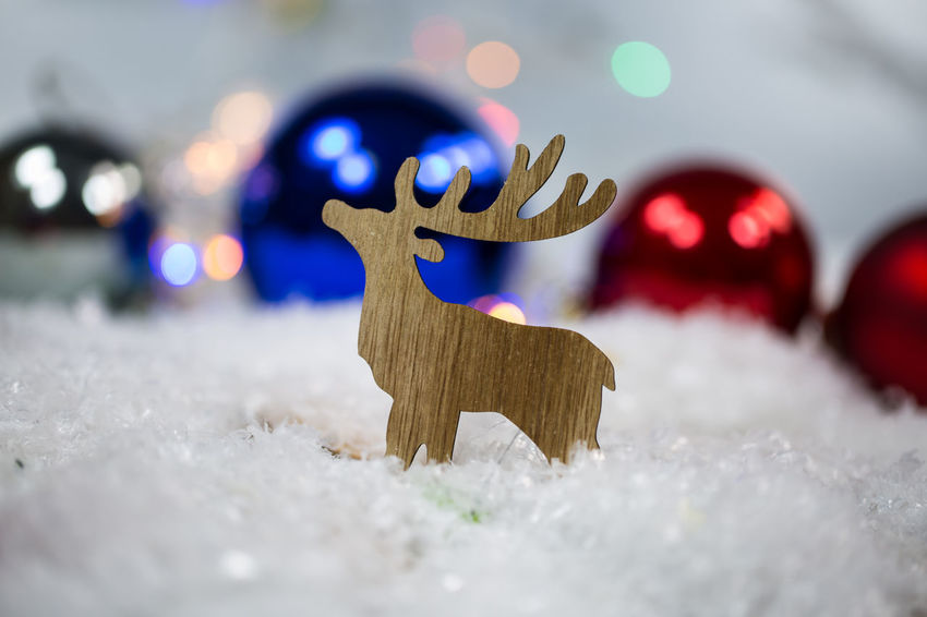 Celebration Christmas Christmas Decoration Christmas Ornament Close-up Cold Temperature Decoration Focus On Foreground Holiday Illuminated Indoors  No People Red Selective Focus Shape Snow Winter Wood - Material