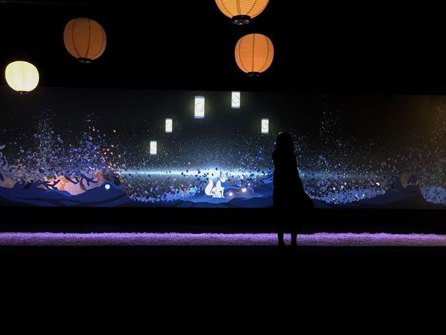 提灯 狐 人影 。 Lantern Fox Silhouette Illuminated Touch Screen EyeEm Gallery Instalation From My Point Of View Light And Shadow Light In The Darkness Lighting Equipment Japan Installation Projection Standing Silhouette_collection