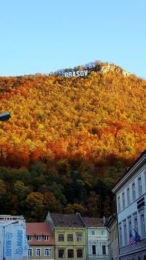 autumn over Brasov City Colors Autumn Mountain Tree Mountain Sky Architecture Rooftop Roof Traditional Building Residential Structure Housing Settlement Historic Tiled Roof  Exterior Building Roof Tile