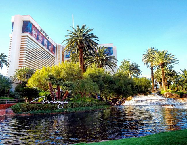 Water Tree Architecture Outdoors Building Exterior Built Structure Clear Sky City Travel Destinations Desert Nature Las Vegas City Cityscape Urban Skyline Modern Architecture Mirage Hotel The Mirage Hotel