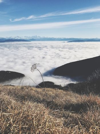 Above the clouds... Nature Beauty In Nature Tranquil Scene Tranquility Scenics Landscape No People Outdoors Blue Sky Mountain Mountains Mountain View Sky Cloud - Sky Clouds Mont Blanc EyeEm Nature Lover Eye4photography  EyeEm Gallery