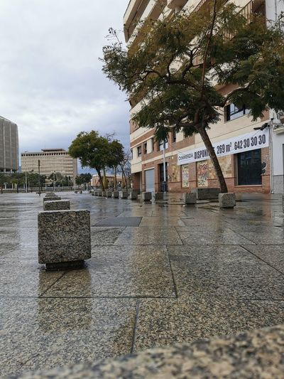 View of wet street by buildings in city