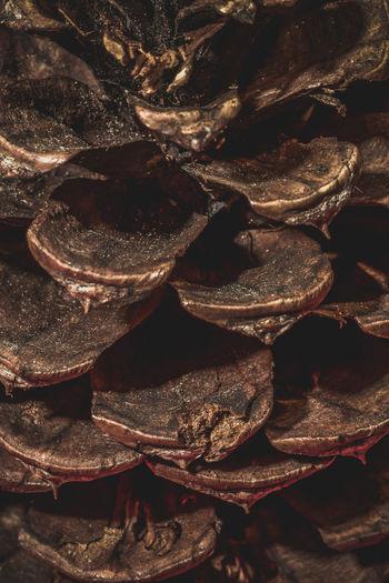 Full frame shot of dried food