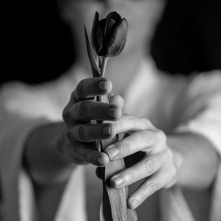 'love' Blackandwhite Enjoying Life Love Schwarzweiß Monochrome Blackandwhite Portrait Tulip Tulp