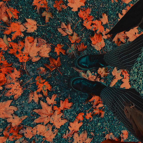 Low section of woman standing on maple leaves during autumn