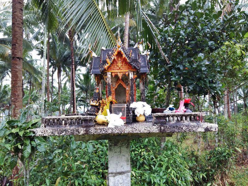 spirit house Asian  Asian Culture Belief Cult Faith Guardian Spirit Religion Satyr House Small Temple Spirit House Temple Temple - Building Temple Architecture Temples Thai Thailand