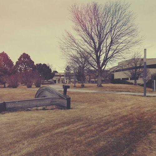 I hate college, I wanna b famous already📍 Landscape Trees Grunge Soft Grunge