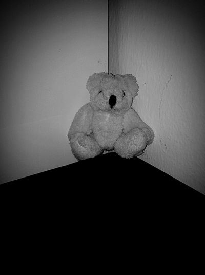 Lonely bear , lonely world