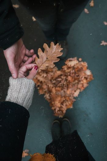 Low section of couple holding hands over autumn leaves arranged in heart shape