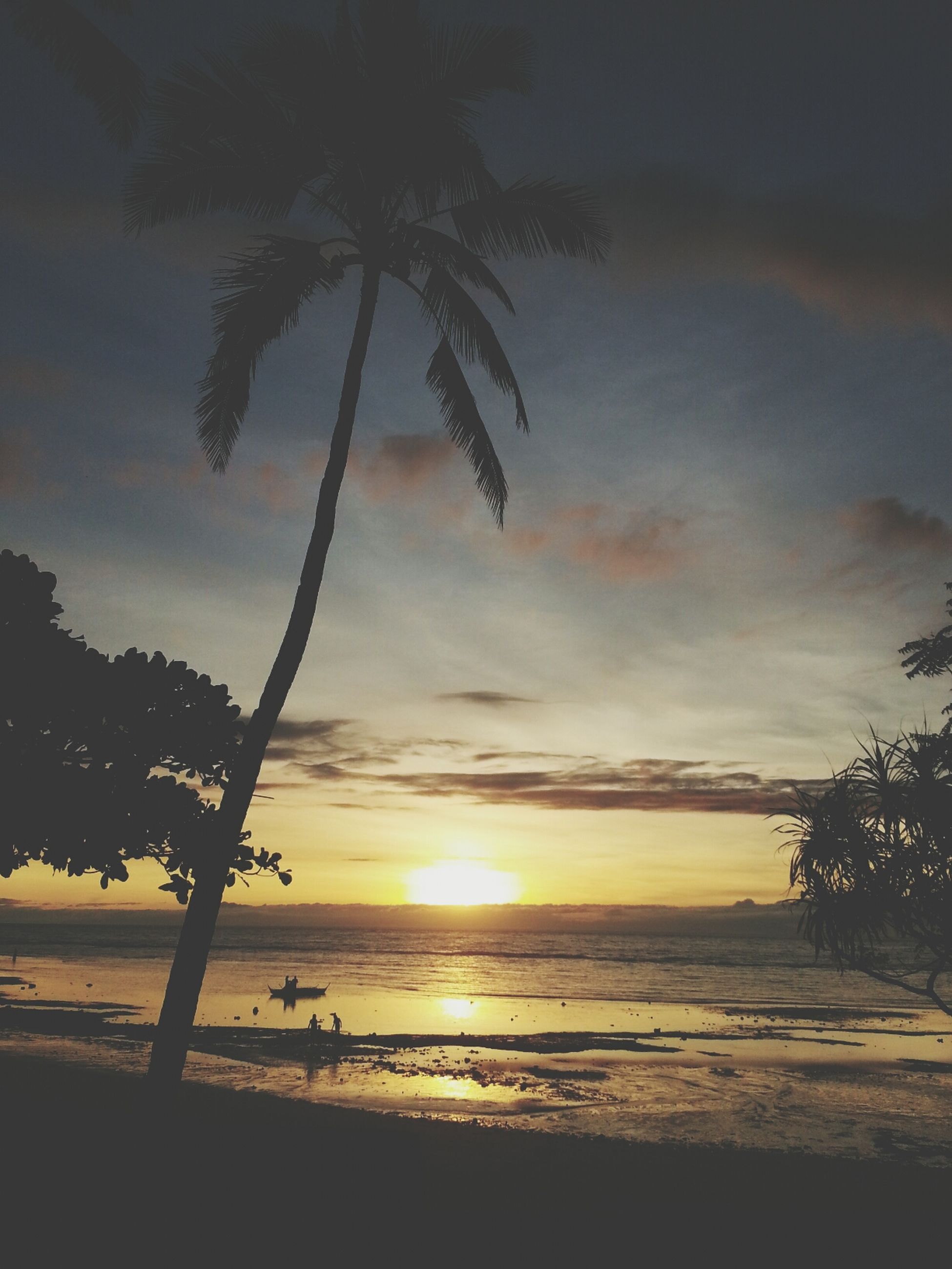 sunset, sea, beach, horizon over water, tranquil scene, scenics, tranquility, sky, water, beauty in nature, silhouette, shore, tree, sun, nature, idyllic, palm tree, cloud - sky, sand, sunlight