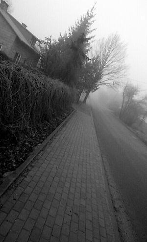 Horror Gotoschool Friday Foggy