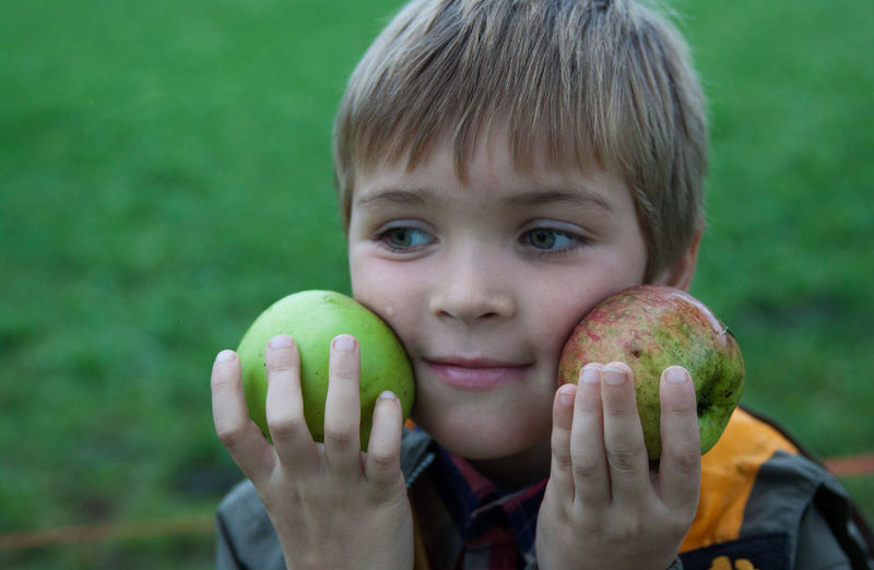 Close-up of boy holding apples on field