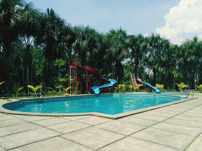 🌴🌳🌴 Vacations Relaxation Tree Swimming Pool Blue Outdoors Sunlight Summer Water Palm Tree Day Slide - Play Equipment Full Length Sky No People Outdoor Play Equipment Water Slide First Eyeem Photo