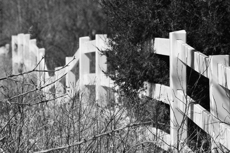 Long white fence Outside Of Town Outdoors Day Black And White Shadow Sun Fence