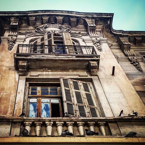 Greece Architecture Thessaloniki Pigeons Greek First Eyeem Photo