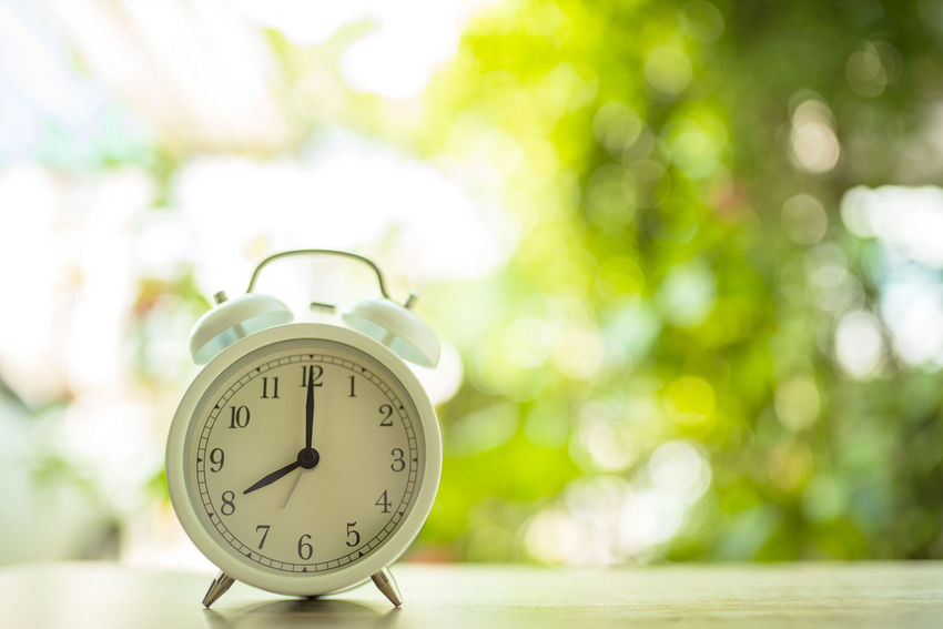 Alarm Clock Clock Focus On Foreground Time Number Plant Close-up Table Nature Tree No People Day Outdoors Still Life Clock Face Flower Springtime Flowering Plant Copy Space Instrument Of Time Minute Hand