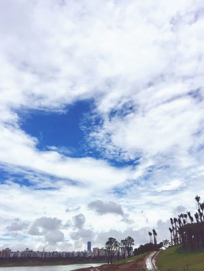 Cloud - Sky Sky Nature Plant Beauty In Nature Tree Day