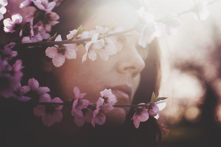 Portrait Woman Portrait Cherry Blossom Peach Blossom Blossom Blossoms  Blooming Spring Sunlight Sunset Woman