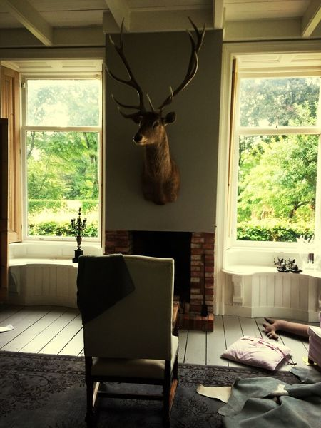 Interior Interior Design Deer
