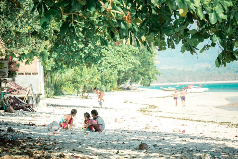 Tree Beach Water Land Group Of People Plant Sea Nature Childhood Day Child Men Women Sand Boys Males  Leisure Activity Females Real People Outdoors